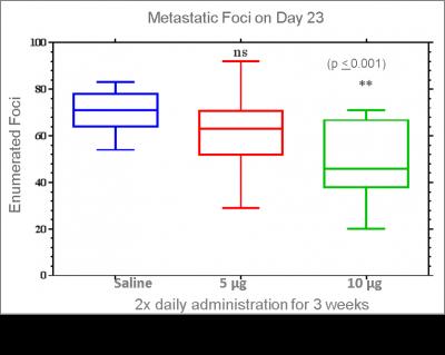 Metastatic Foci